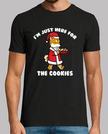 dog shiba inu cookies christmas