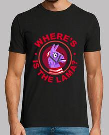 dov39è il lama?