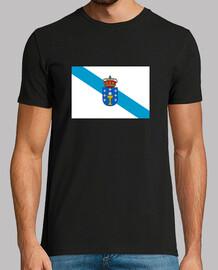 drapeau galice avec bouclier