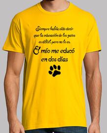 education cats
