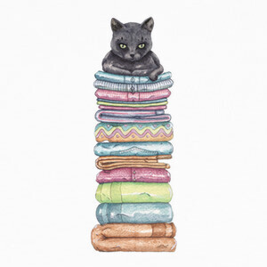 Tee-shirts El trono del Gato