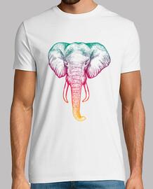 Elefante holografico H