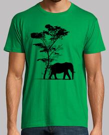 elefante nella savana