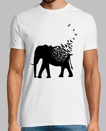 Elefante pajaros