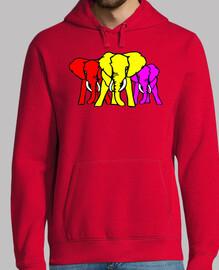 Elefantes República