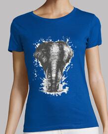 elephas