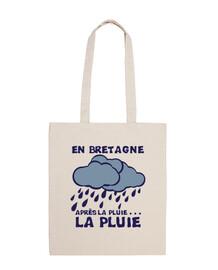 en Bretagne apres la pluie...