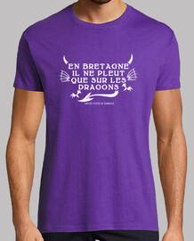 En Bretagne il ne pleut que sur les dragons - T-shirt homme