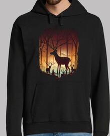 en el bosque de ciervos