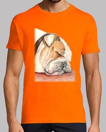 english bulldog alfie