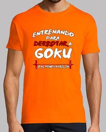 Entrenando Goku - Chico Colores