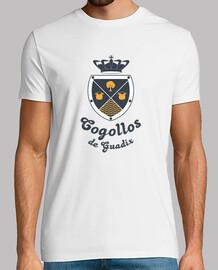 Escudo Cogollos de Guadix, Granada