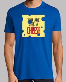 Estás como un queso