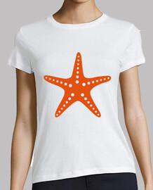 étoiles de mer d'orange