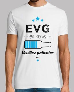 EVG en cours veuillez patienter