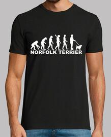 evolucion de norfolk terrier