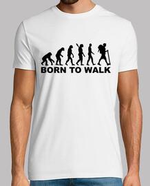 evolution hiking born to walk