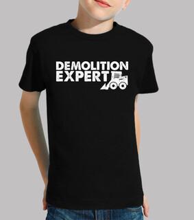 expert en démolition