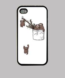 famiglia di bradipi tascabili