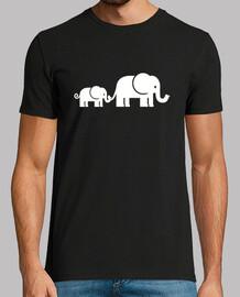 famille d39éléphants
