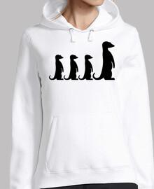 famille suricate
