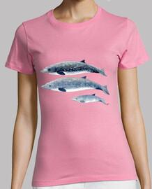femme chemise baleine à bec de blainville