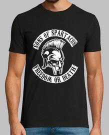 fils de spartacus