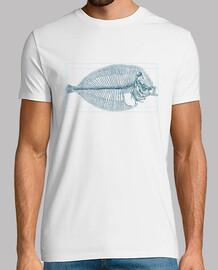 fish squelette