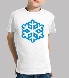 flocon de neige d'hiver
