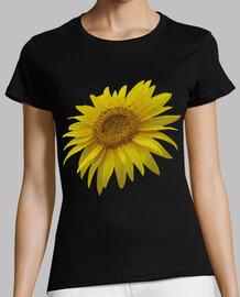 Flor Girasol / Flores Girasoles