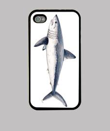 fondé requin-taupe commun (lamna nasus)