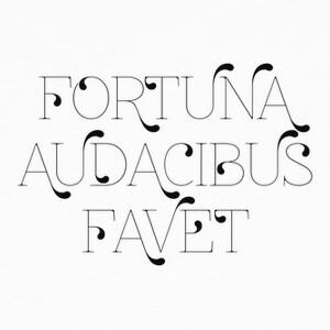 Camisetas Fortuna audacibus favet