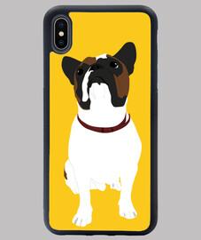French Bulldog - Gaz
