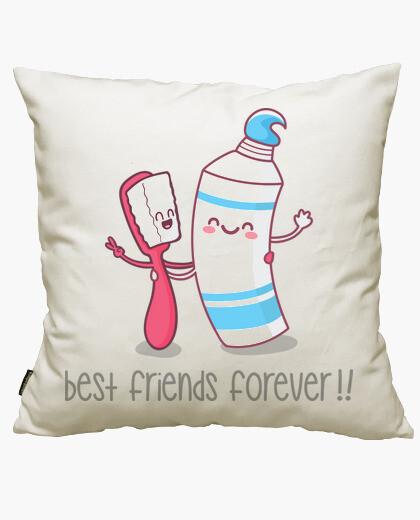 Fodera cuscino friends per sempre !!!