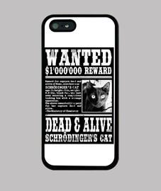 funda gato schrödinger