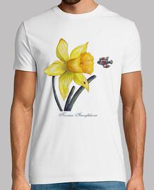 future botanical studies: daffodil