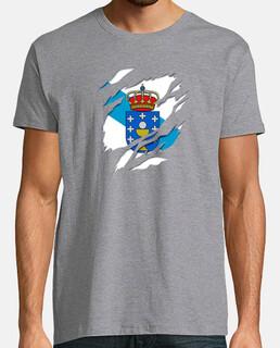 Galicia bandera y escudo de armas