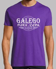 galician thoroughbred - trisquel