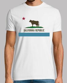 GALIFORNIA REPUBLIC