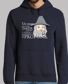 Gandalf nunca llega tarde ver2