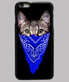gangster chat (bandana bleu)
