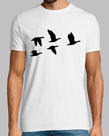 gansos que vuelan las aves