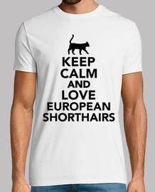 garder le calme et l'amour shorthair européen