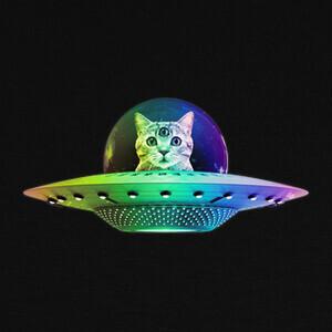Tee-shirts gato espacial