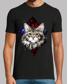 gato estelar