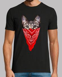 gato gángster