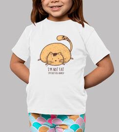 gato grande 2