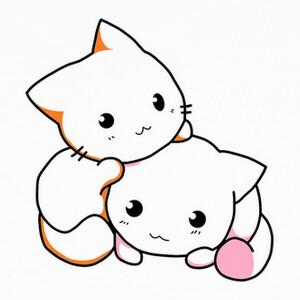 Camisetas Gats