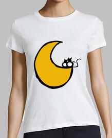 gattini sulla luna