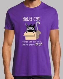 gatto ninja
